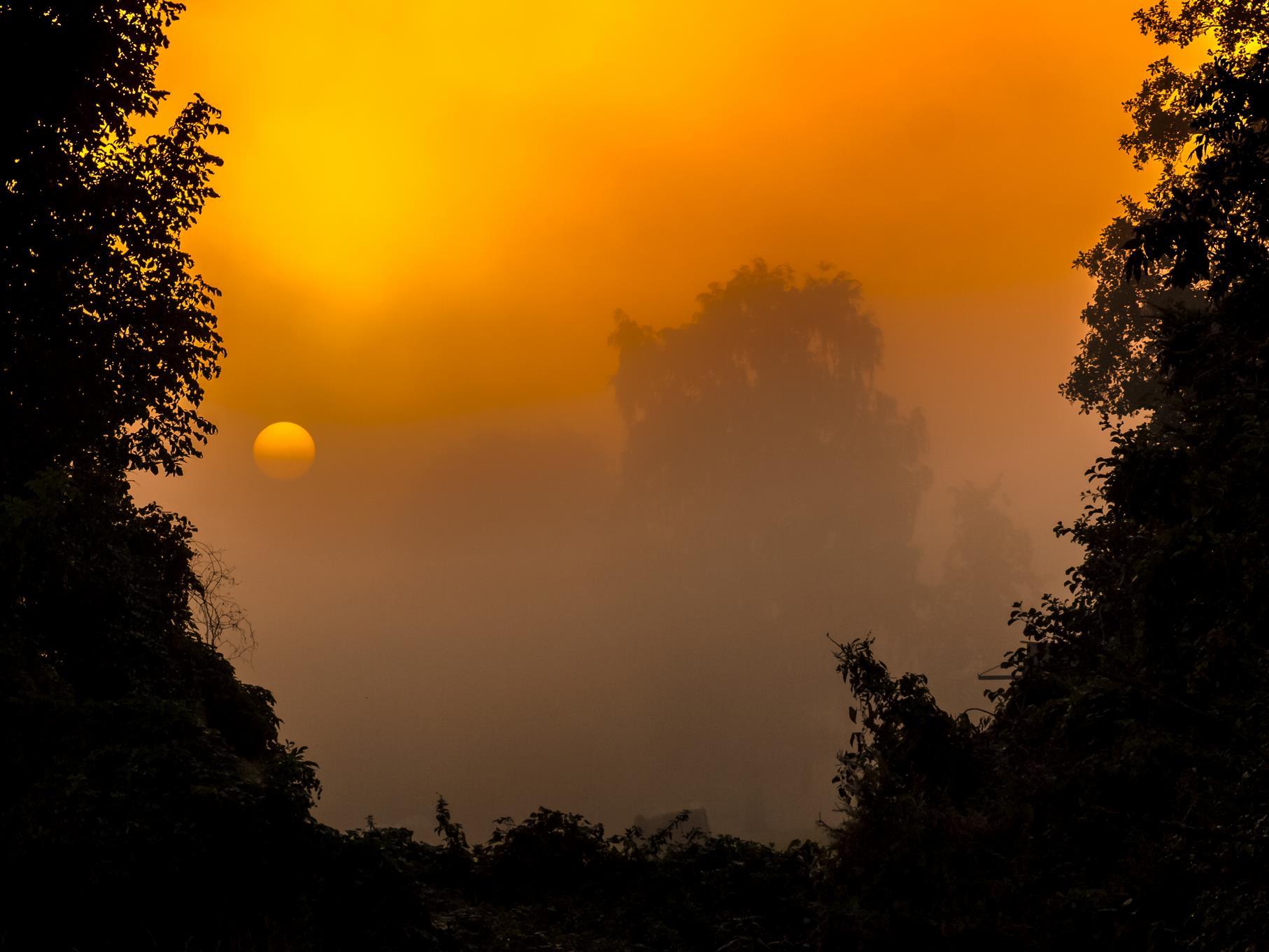 Ein nebeliger Sonnenaufgang.
