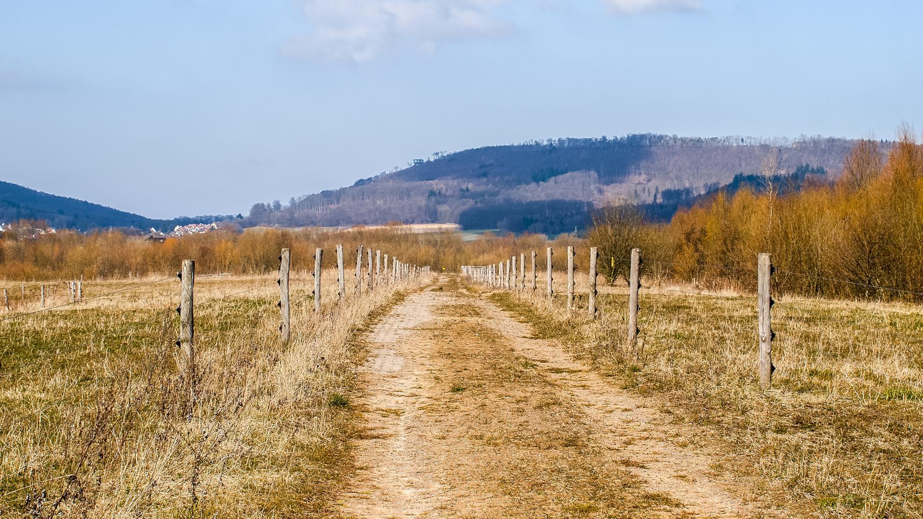 Der Stichweg mit den Weidepfählen, die auf beiden Seiten aufgestellt worden sind, damit sich die Weidetiere dort aufhalten können.