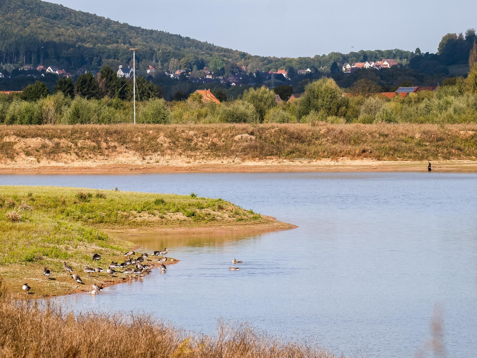 Blick auf die flache Insel und die Vogelinsel im westlichen Teich.