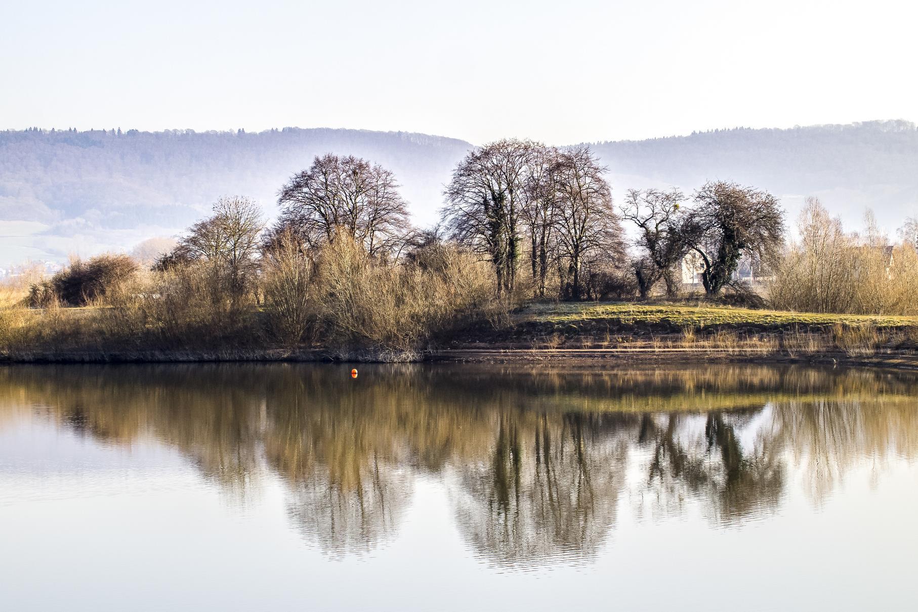 Die kahlen Bäume auf dem Mitteldamm mit dem mittleren Teich im Vordergrund.