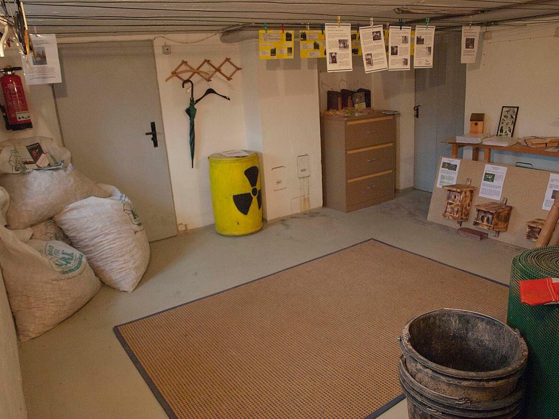 Auch die Kellerräume bieten Anschauungsobjekte. - Foto: Kathy Büscher