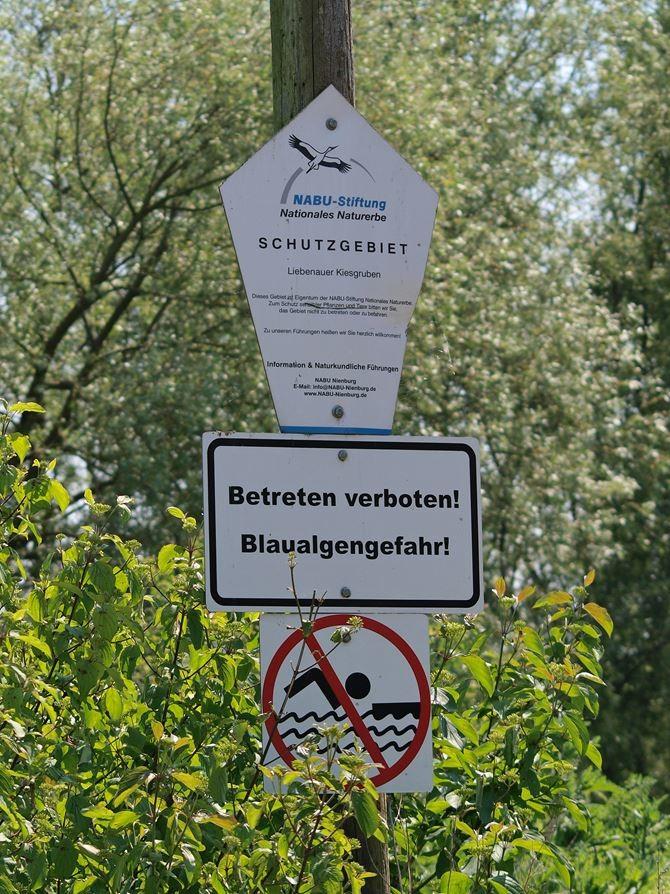 Hinweisschild im Naturschutzgebiet. - Foto: Kathy Büscher