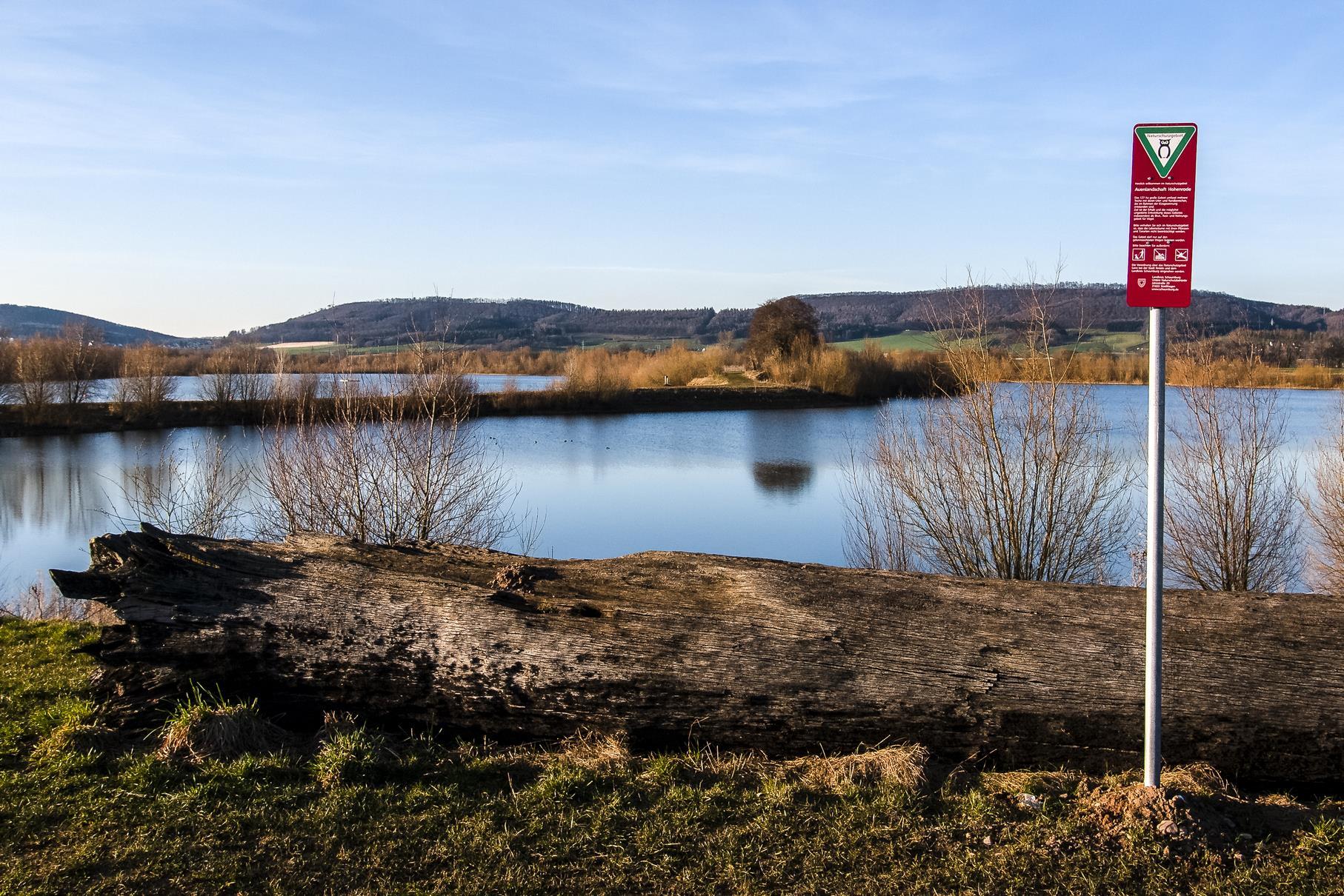Die Mooreiche am östlichen Teich mit den NSG-Schild.