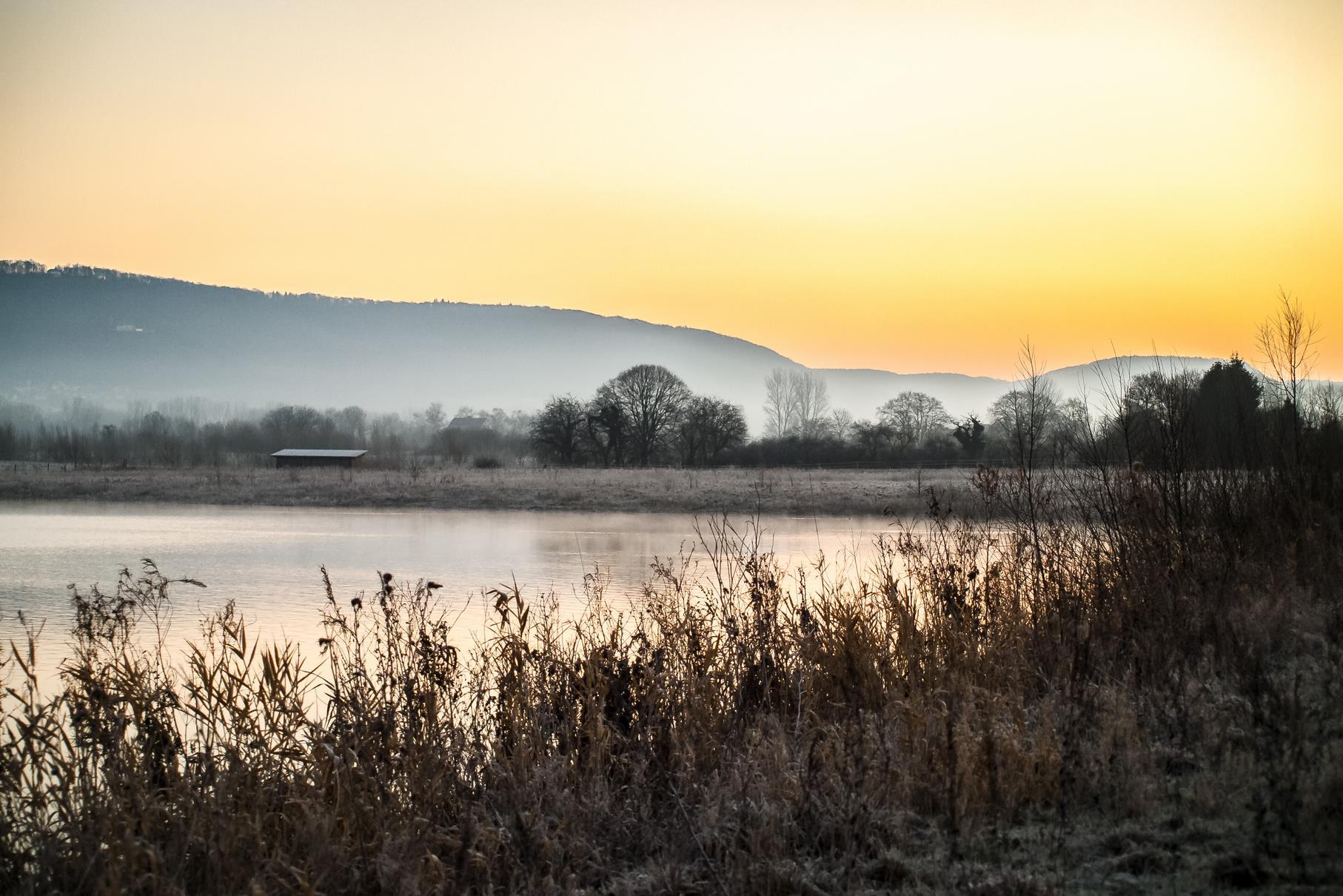 Der Nebel und die Kälte sorgen für schöne Farben zum Sonnenaufgang.