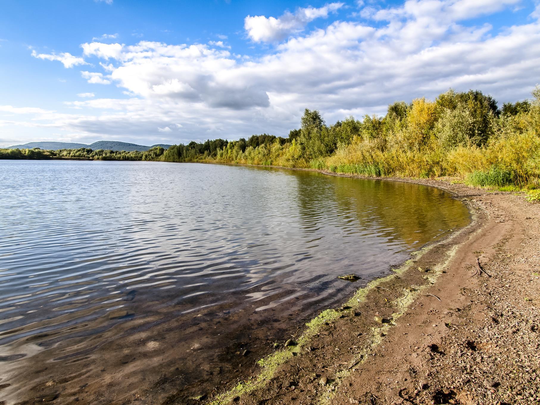 Langsam verfärben sich die Weiden am Ufer herbstlich.