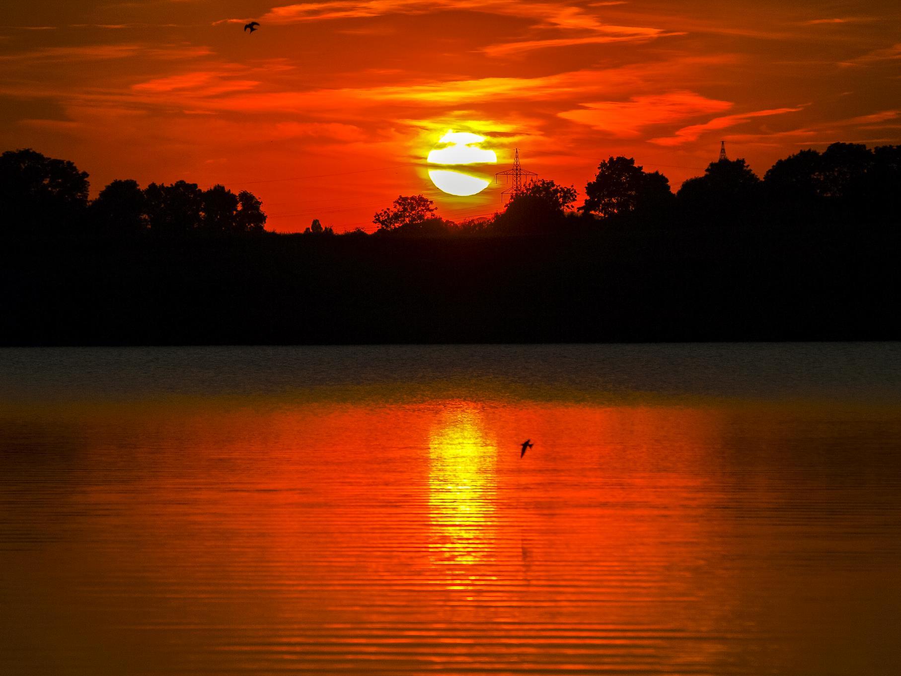 Die Abendsonne taucht die Auenlandschaft in ein besonderes Licht.