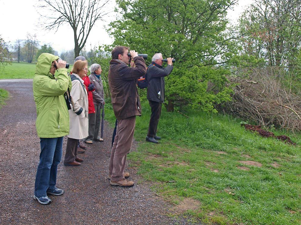 Vogelstimmenwanderung an die Sassenbergschen Kiesteiche. - Foto: Kathy Büscher