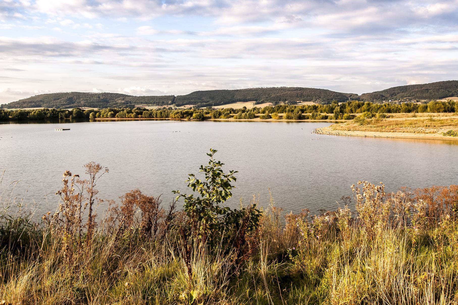 Der westliche Teich mit dem Flussseeschwalbenfloß im Abendlicht.