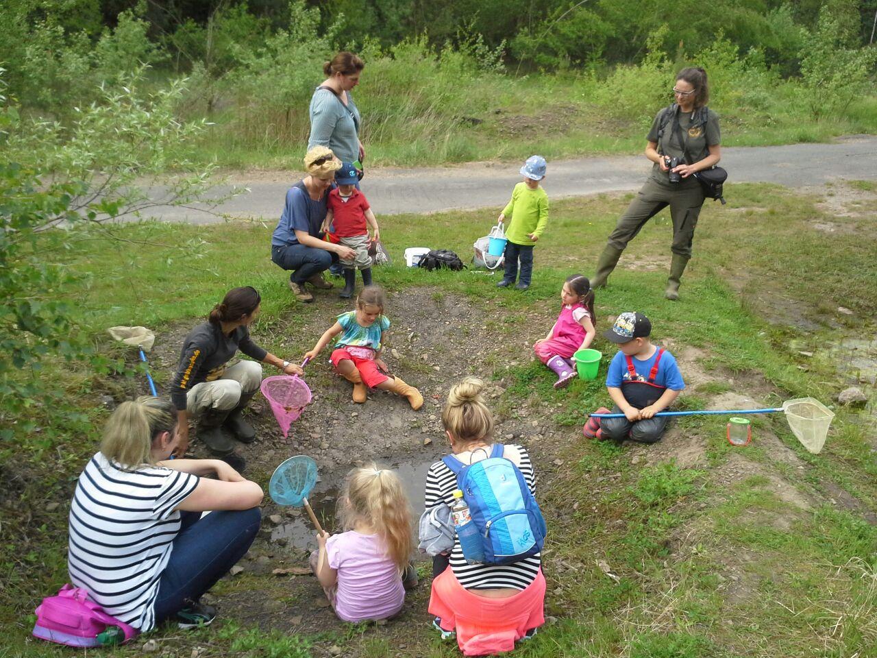 Die Tümpel werden nach Amphibien abgesucht. - Foto: Britta Raabe