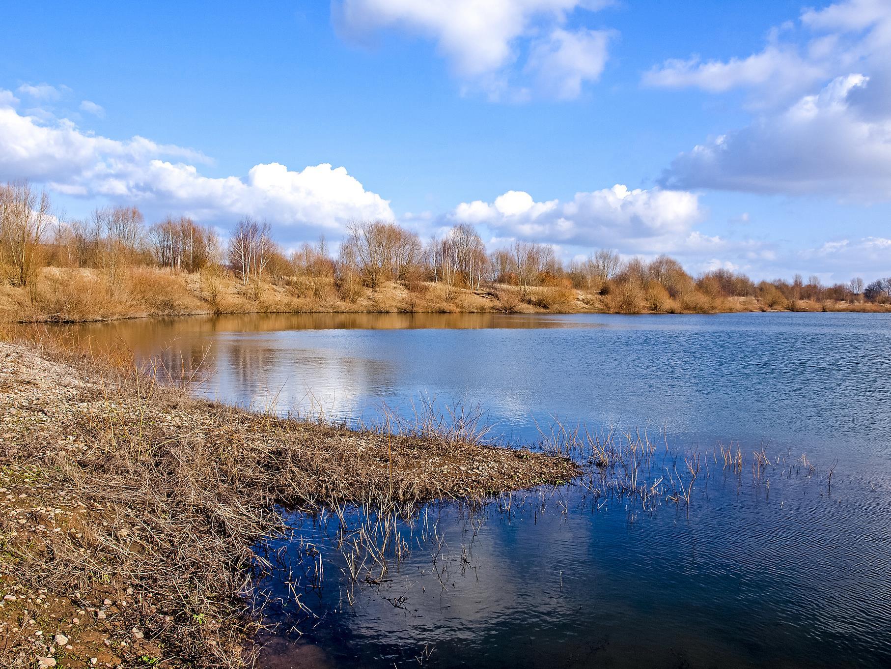 Die Wasserflächen im hinteren Bereich des mittleren Teiches.