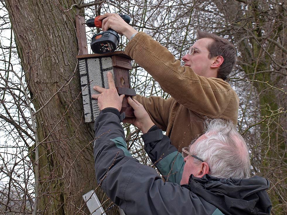Auch das Nistangebot für Singvögel wird vergrößert. - Foto: Kathy Büscher