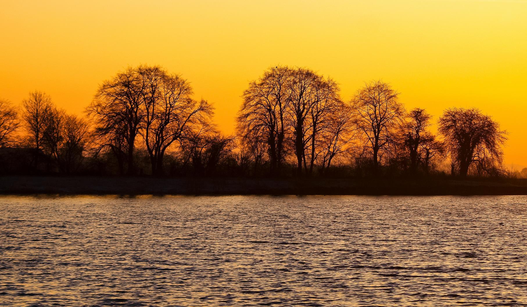 Ein Sonnenaufgang im Januar am mittleren Teich.
