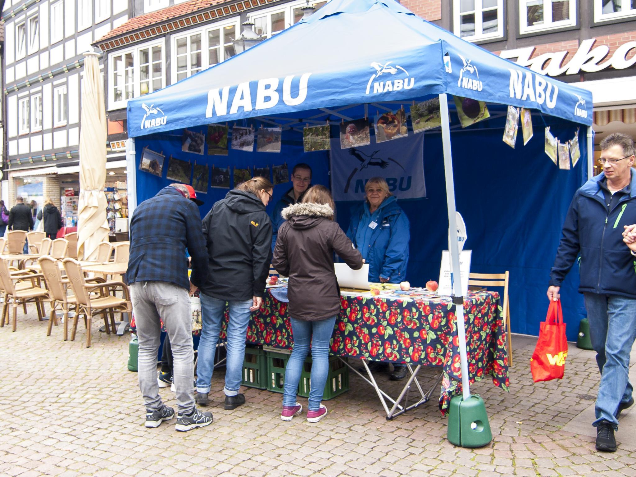 Der Info-Stand auf dem Rintelner Marktplatz. - Foto: Kathy Büscher