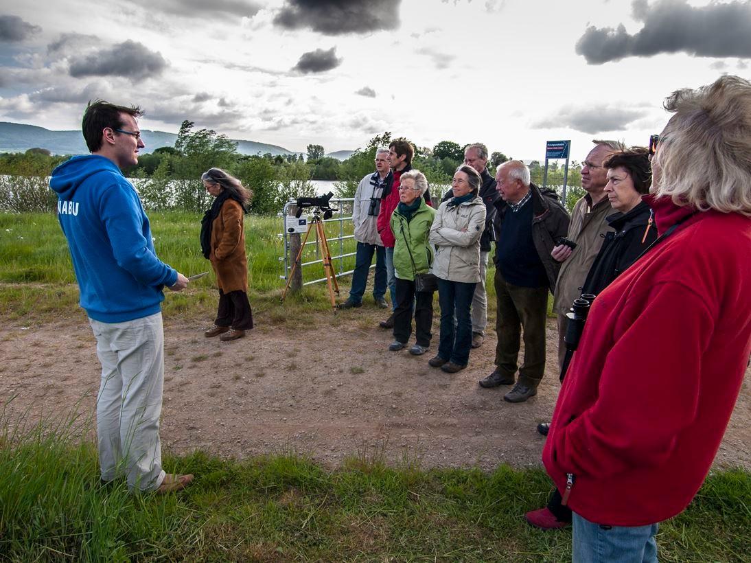 Exkursionen, wie hier in der Auenlandschaft Hohenrode. - Foto: Kathy Büscher