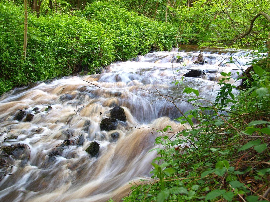 Der Wasserfall auf dem Gelände. - Foto: Kathy Büscher