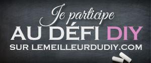 défi-diy-LesAteliersDeLaurène