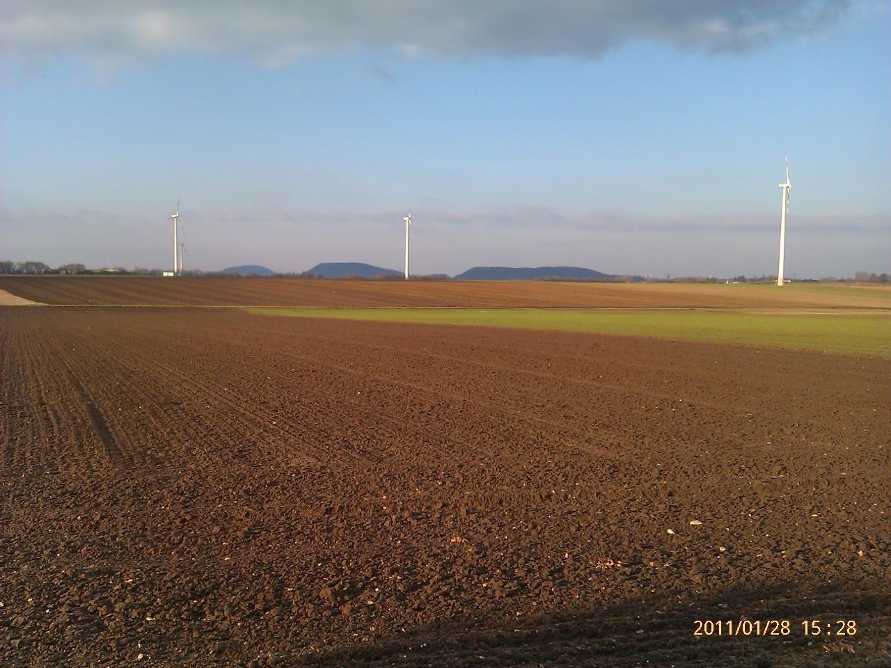 Felder hinter Würselen