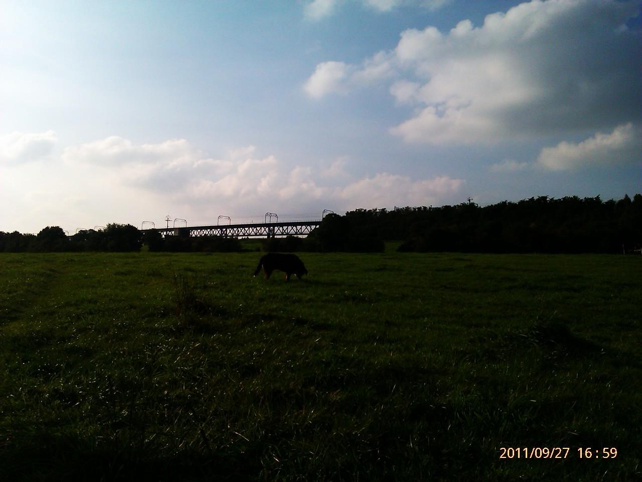 Welkenrath