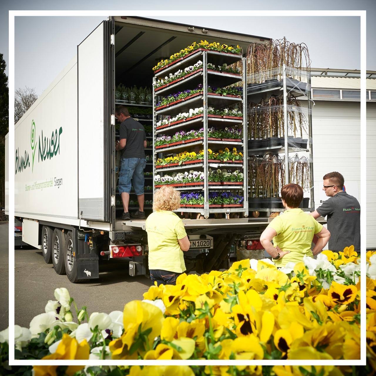 Warenanlieferung im Frühling