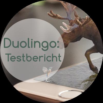 Kann man mit der App Duolingo Norwegisch lernen?