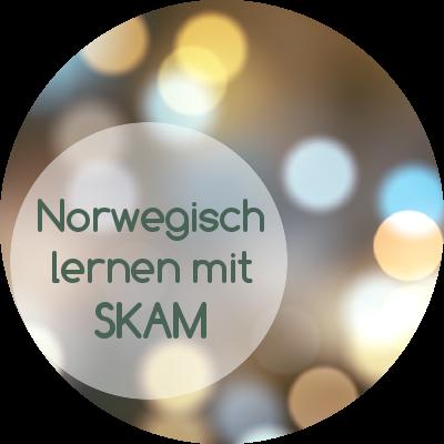 norwegische Jugendsprache und Slang-Ausdrücke in der Serie Skam