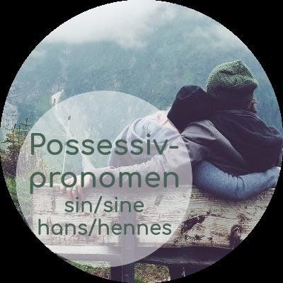 norwegische Possessivpronomen: hans, hennes, deres vs. sin, sitt, sine