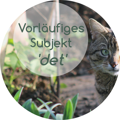 """det""/""es"" als inhaltsleeres Subjekt in der norwegischen Satzstruktur"