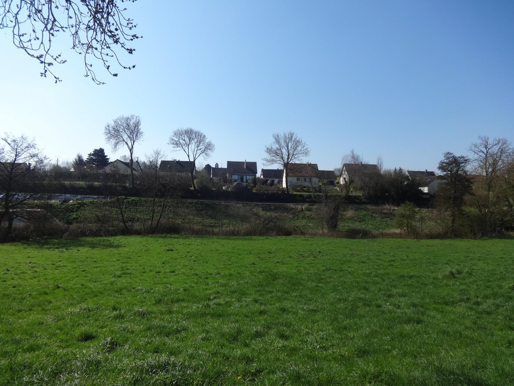 Vue sur Avenay
