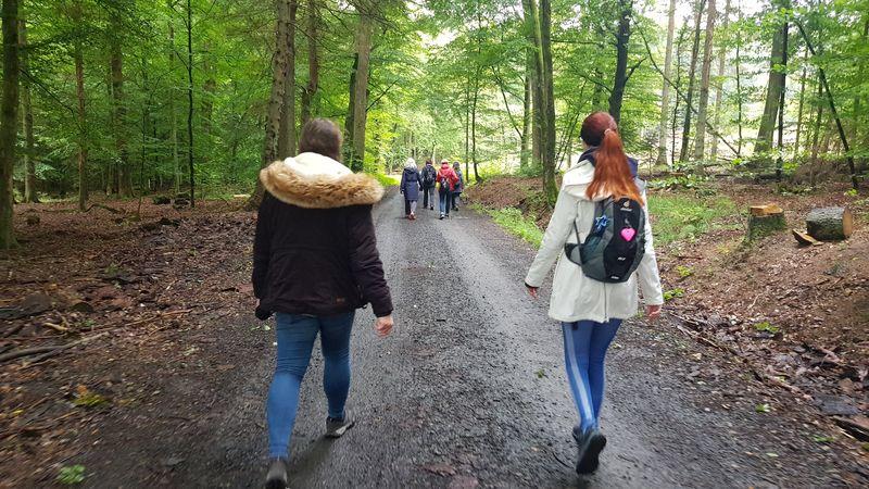 Singlewanderung rund um Hachenburg