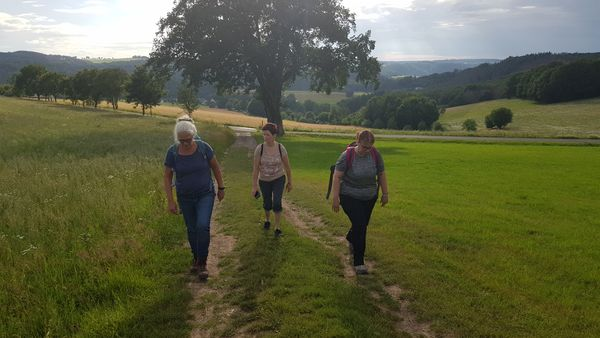 After work walk Kundert oberhalb des Naturdenkmals der Eiche zwischen Heimborn und Mörsbach