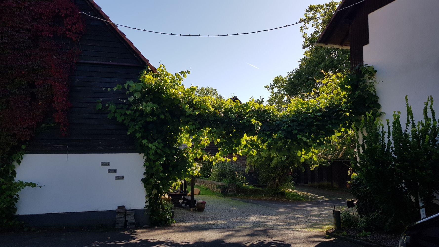 Hofgut Dapprich - Graf Johann von Nassau-Hadamar wandelte das Dorf 1637 in einen Hof um
