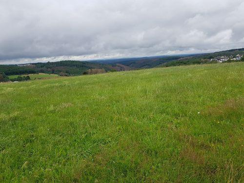 Ausblick Richtung Westerwald und Kroppach auf der Gesundheitswanderung Mörsbach