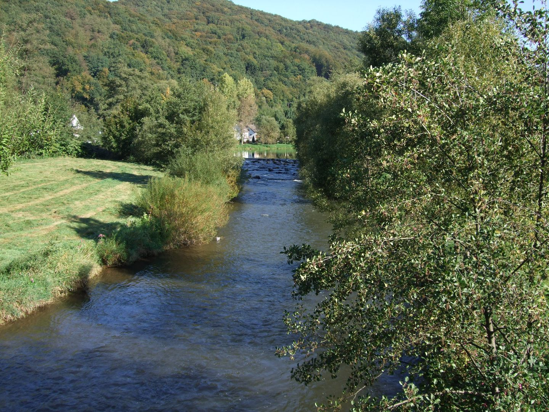 Die Wied bei Waldbreitbach