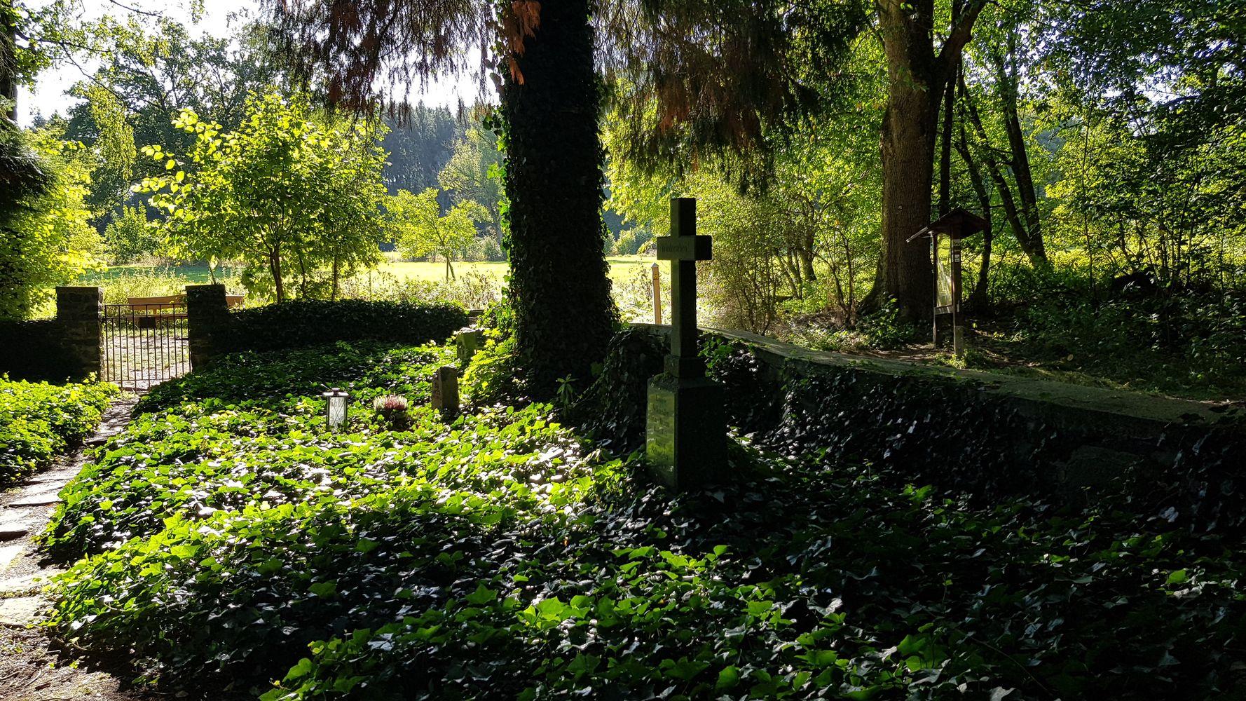Familienfriedhof der Familie Schneider - den Besitzern des Hofgutes Dapprich