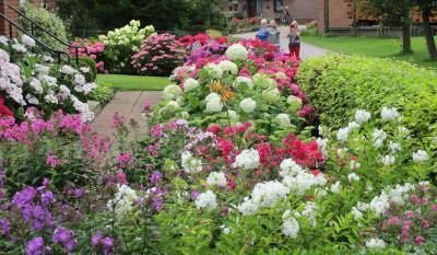 Blumengarten in Bentfeld