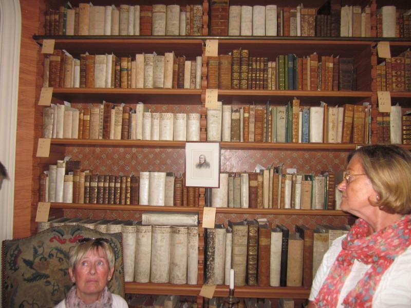 Bibliothek- die Wände (hinter den Bücher zu sehen) sind bemalt