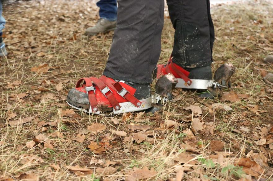 Robert van Dam is introducing tracking shoes