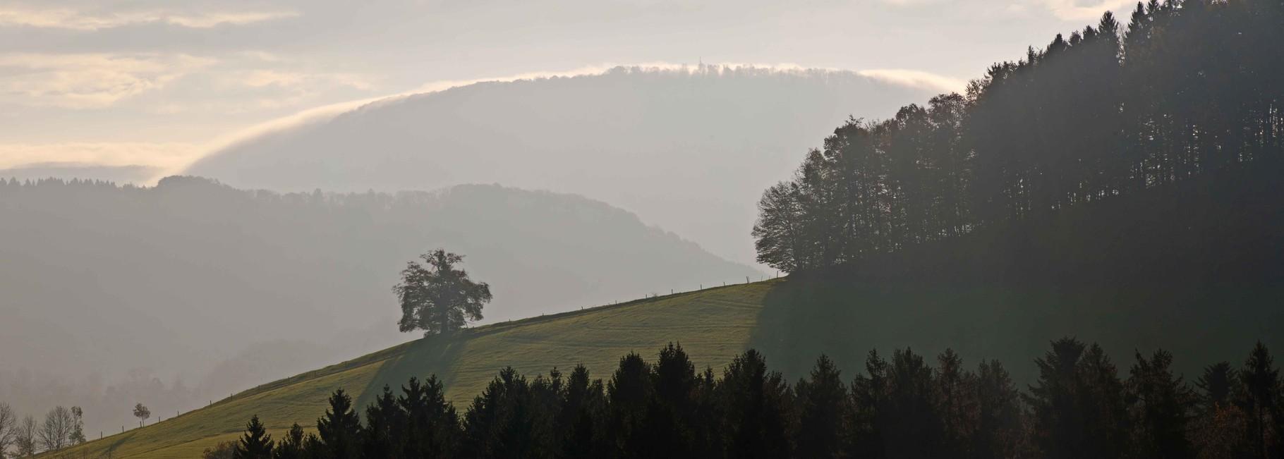 bei Reichenbach am Rechberg