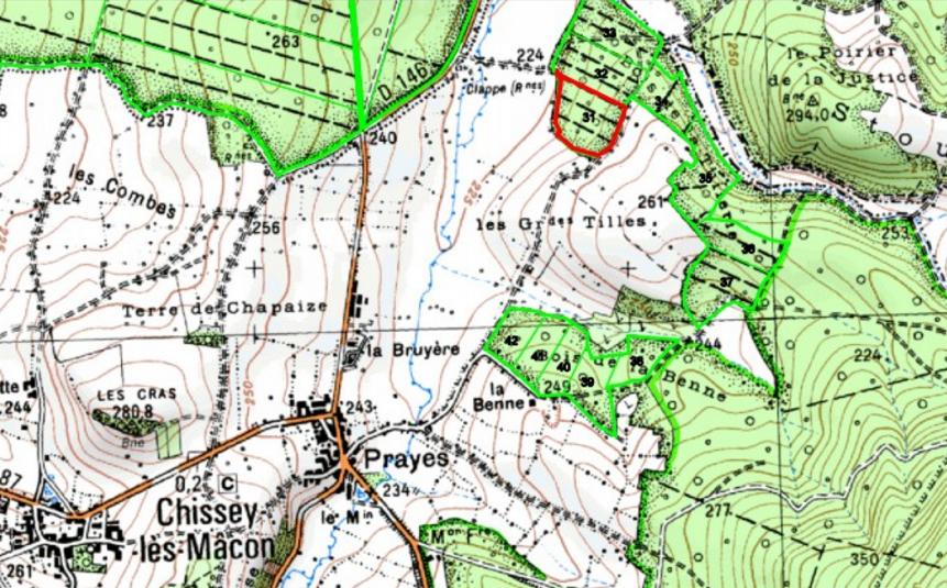 La parcelle replantée est indiquée en rouge