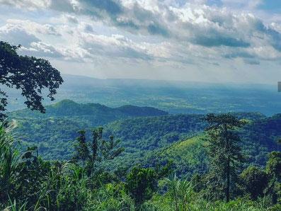 Affen, Canyoning, Kente und Regenwald in Amedzofe