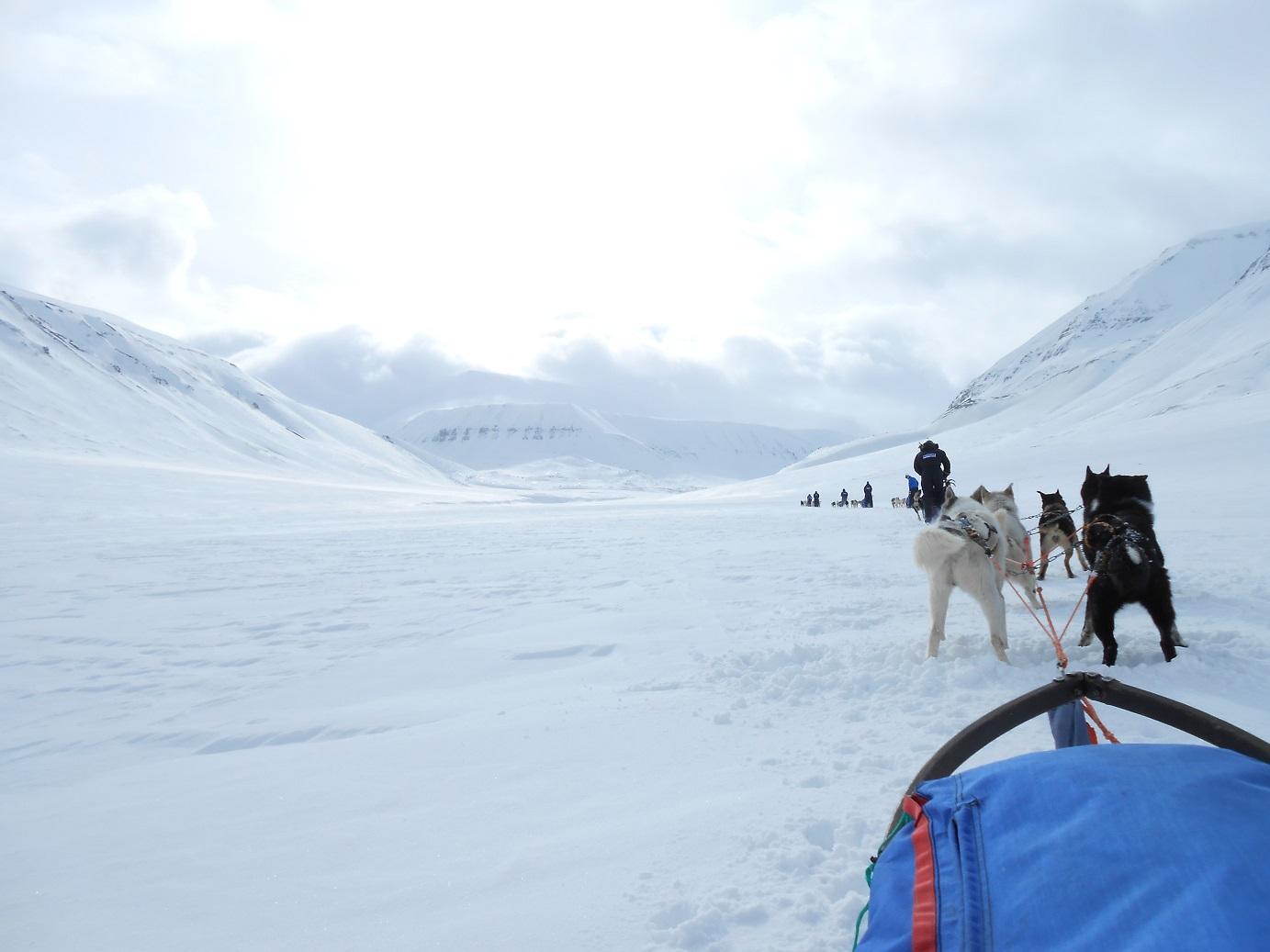 Mit dem Hundeschlitten zur Eisgrotte auf Spitzbergen