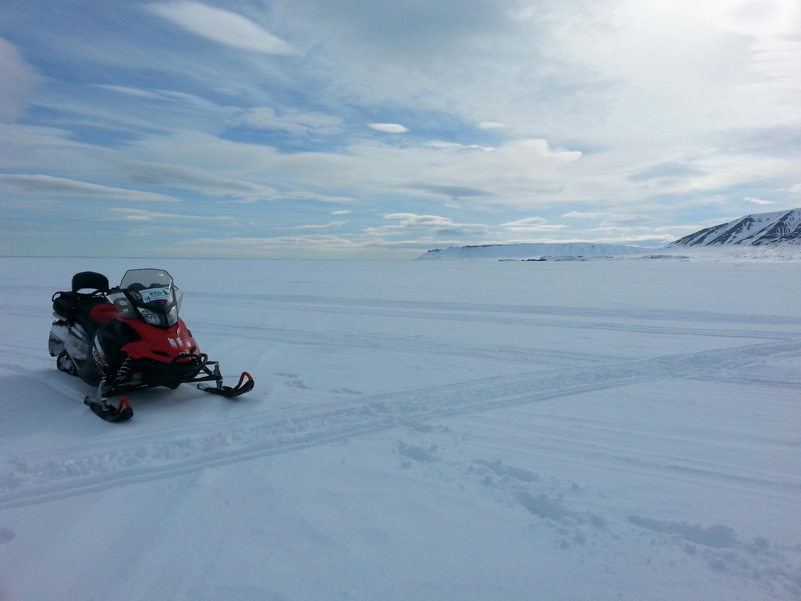 Mit dem Schneescooter zu den Eisbären auf Spitzbergen