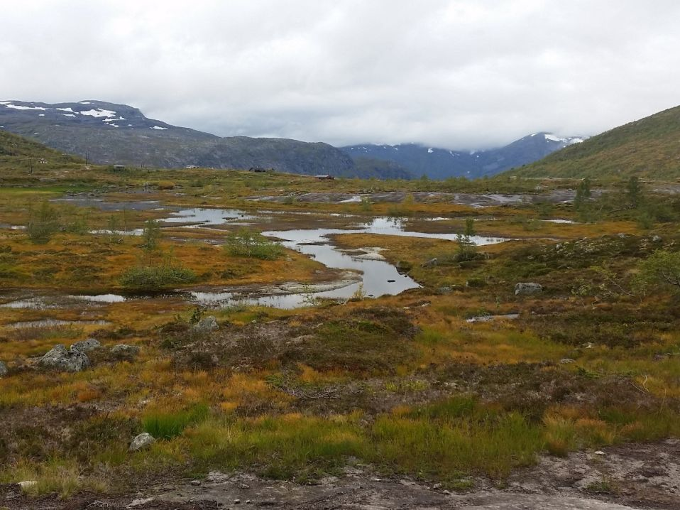 Warum du im Herbst nach Norwegen reisen solltest