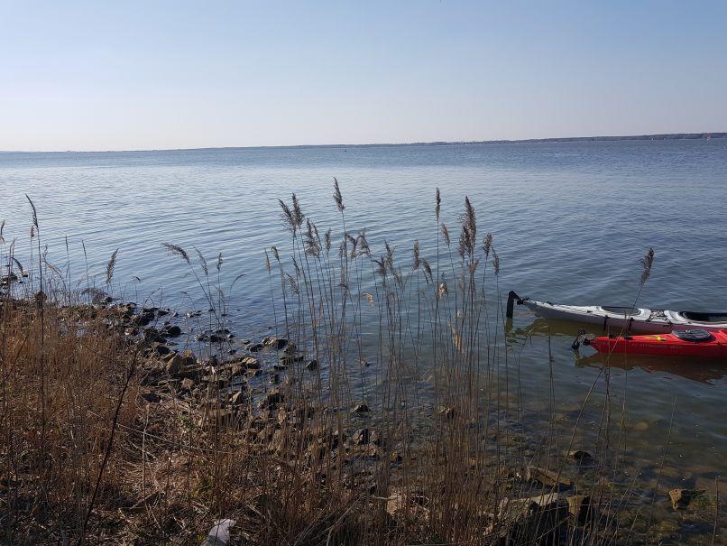 Ein Tag am Steinhuder Meer