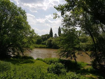 5 km Radius: So schön ist meine Heimat Hannover