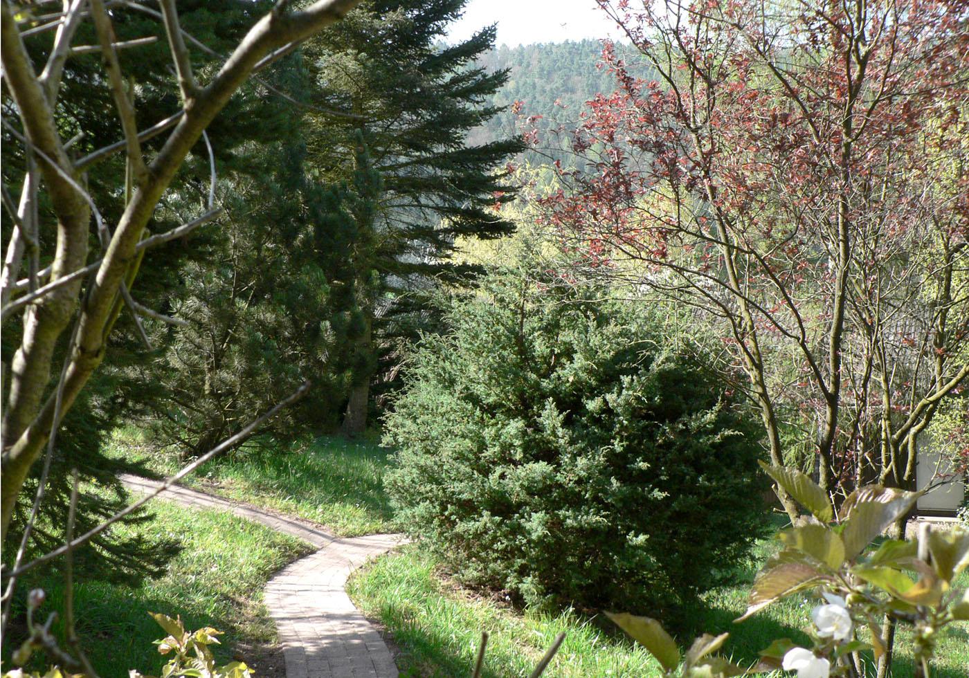Weg vom Parkplatz bis zur Blockhütte - Blick nach Süden