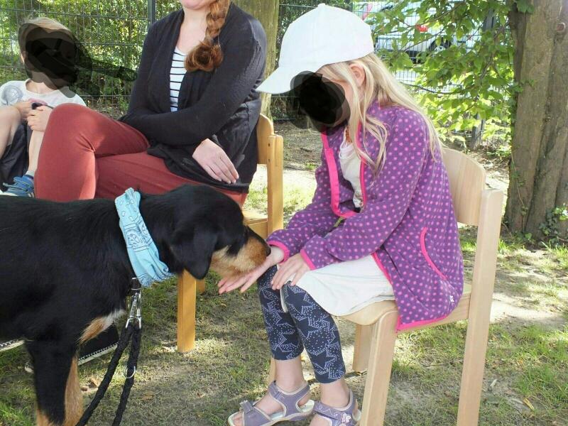 Abby ist zur Zeit in der Ausbildung zum Therapiehund