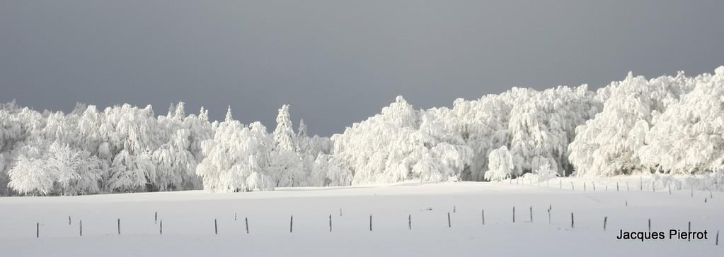 Prairie enneigée à l'auberge des trois fours.  ( Hautes Vosges )
