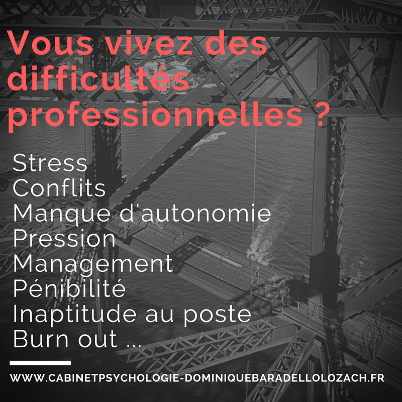 cv competences  experiences   travaux universitaires