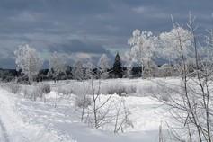Winter im Hohen Venn Winterwonderland